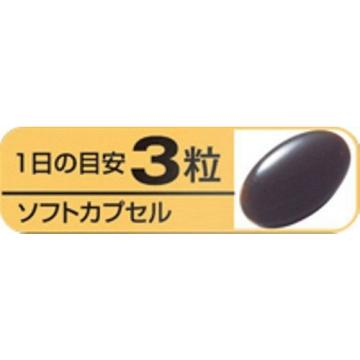 Kobayashi Dietary Supplement Aged Black Garlic Black Vinegar Mash 90 Grains