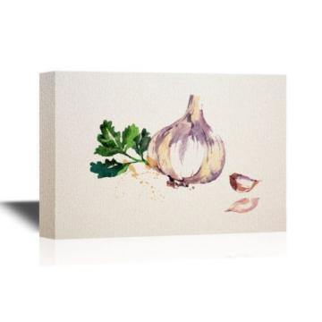 wall26 - Canvas Wall Art - Watercolor Painting of Garlic - Ready to Hang - 16x24