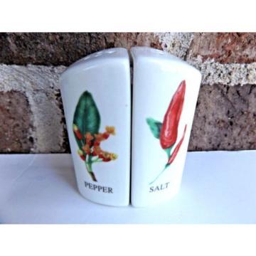 Vintage Salt and Pepper Set Pepper Onion Garlic Triangle White