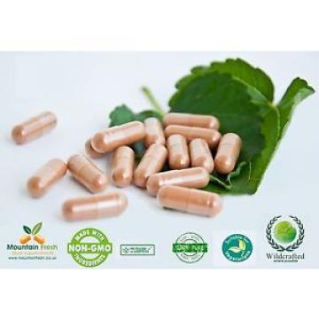 Garlic Odourless Pure Herb Capsules 100 X 100mg