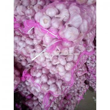 Fresh 2017 year china new crop garlic Garlic  Packing  In  Mesh  Bag For Sale In A Wholesale Price