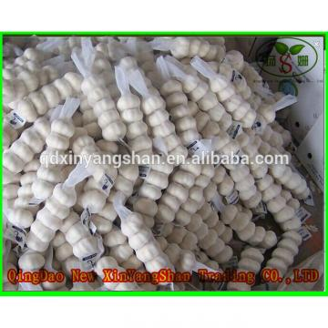 Hot 2017 year china new crop garlic Sale  Chinese  White  Fresh  Spicy Garlic