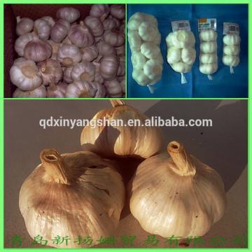 [HOT] 2017 year china new crop garlic 2014  Different  Type  Chinese  Fresh Garlic