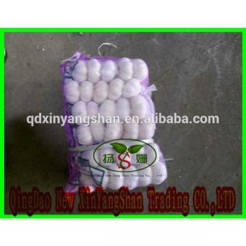 [HOT]Fresh 2017 year china new crop garlic Garlic  by  5kg/10kg/  small  pakage