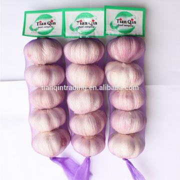Purple 2017 year china new crop garlic garlic
