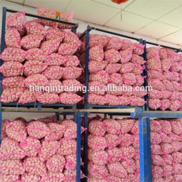 China 2017 year china new crop garlic Garlic