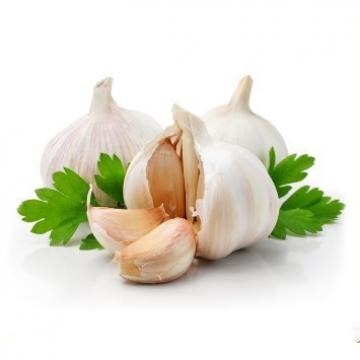 ISO 2017 year china new crop garlic Global  GAP  HACCP  KOSHER  JAS certification fresh style garlic