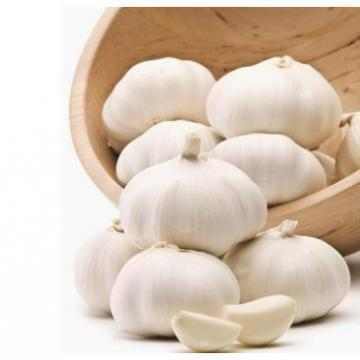 Organic 2017 year china new crop garlic normal  white  fresh  garlic