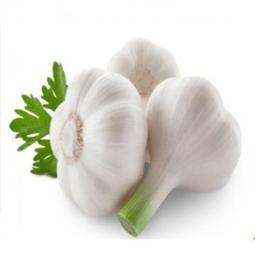 Laiwu 2017 year china new crop garlic 5.5  natural  white  fresh  garlic