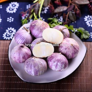 Wholesale 2017 year china new crop garlic fresh  white  garlic  for  export