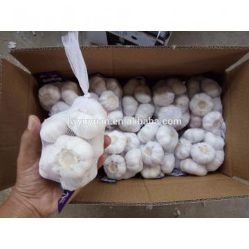 YUYUAN 2017 year china new crop garlic brand  hot  sail  fresh  garlic garlic packing