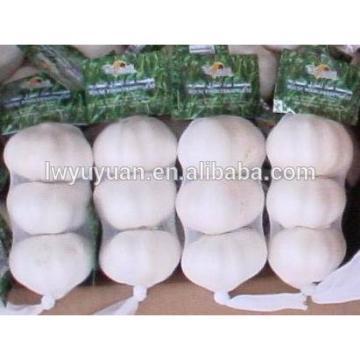 YUYUAN 2017 year china new crop garlic brand  hot  sail  fresh  garlic garlic extract