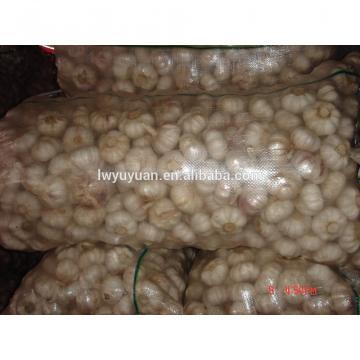 YUYUAN 2017 year china new crop garlic brand  hot  sail  fresh  garlic garlic juicer