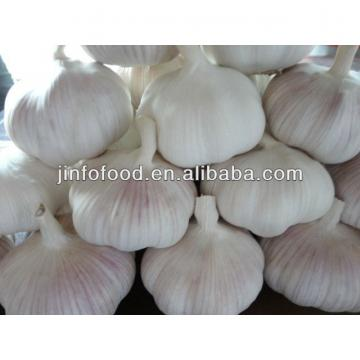 Fresh 2017 year china new crop garlic Garlic