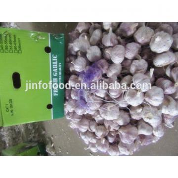 New 2017 year china new crop garlic crop  garlic