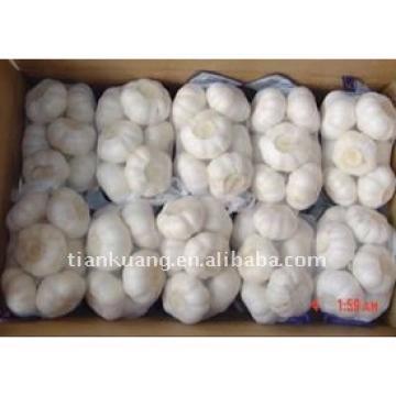 chinese 2017 year china new crop garlic pure  white  garlic