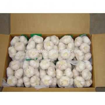 Best 2017 year china new crop garlic price  and  quality  2017  new crop of fresh Chinese garlic
