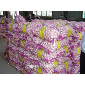 Chinese fresh galic suppliers with best price