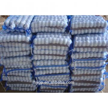 Brand New New Chinese Fresh Pure White Garlic With Great Price