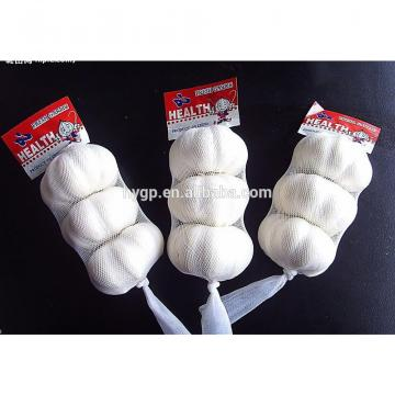 High Quality Professional Garlic In Small Pack