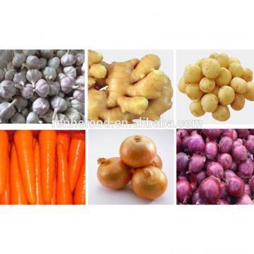Fresh Garlic Global For good health