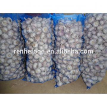 2017 New Crop Fresh Garlic (4.5cm,5cm,5.5cm.6cm up)