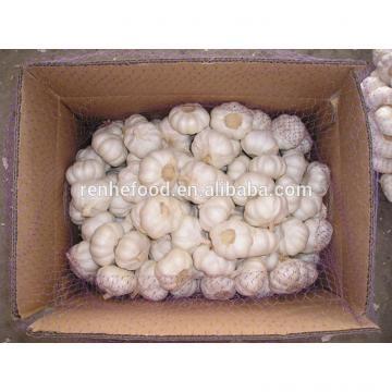 2017 Fresh and Dry Garlic - Chinese Garlic Exporters