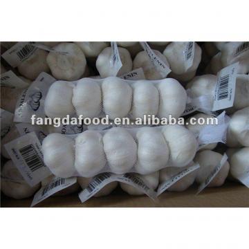crop fresh white garlic 5P packed MOQ:1*40'FCL