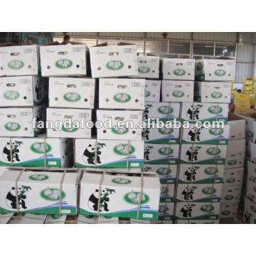 chinese garlic in 10kg cartons