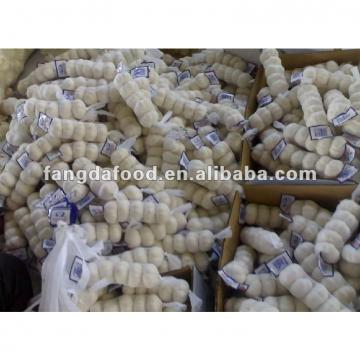small package chinese fresh garlic