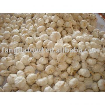 normal white chinese garlic
