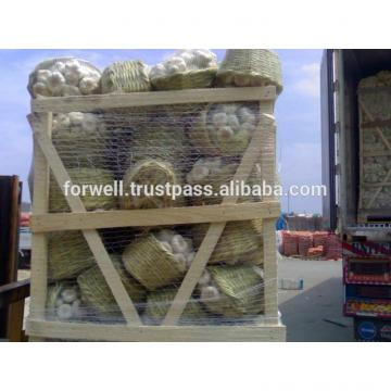MARKET PRICE LIST OF GARLIC / EGYPT.