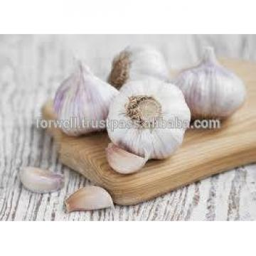 TAKE PART OF PRODUCT GARLIC
