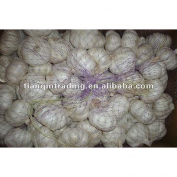 2017 china white garlic price