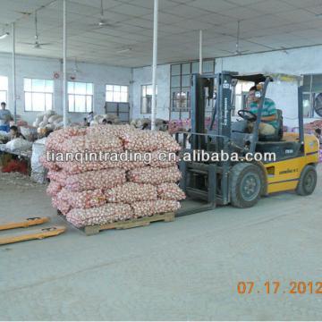 2017 garlic manufacture
