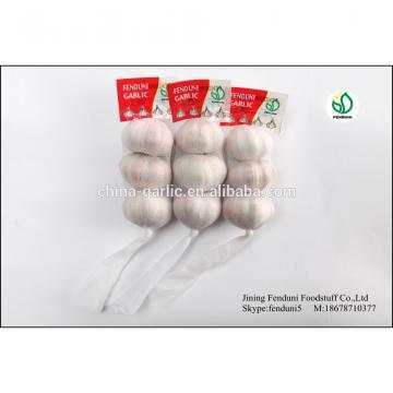 Pure White Garlic From China With 2p;3p;4p;5p;7p 9kg/carton 10kg/carton 20kg/carton