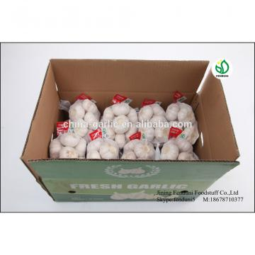 2017 crop fresh common white garlic for sale