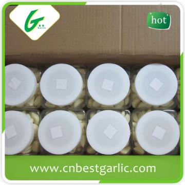 Fresh peeled garlic bag packing