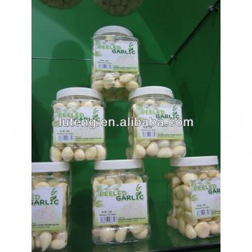 Fresh Peeled Garlic/Garlic Clove-Factory supplying with good price