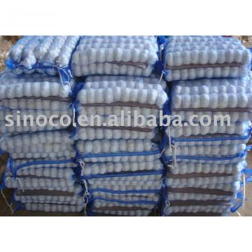 Sell White Garlic (5.0cm)