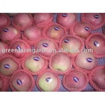 red fuji apple from Shanxi,China in cartons
