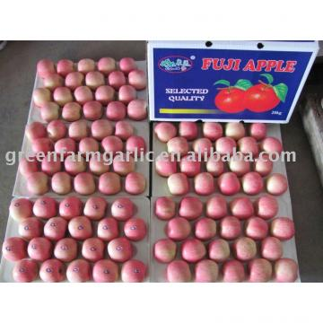 red apple in 20kg cartons