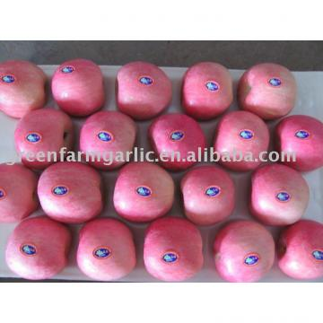 Chinese red fuji apple in 20kg cartons