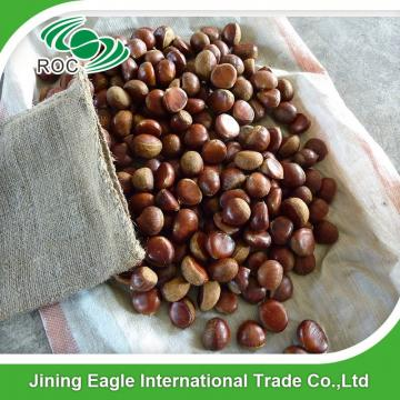 Wholesale Chinese new crop fresh sweet chestnut