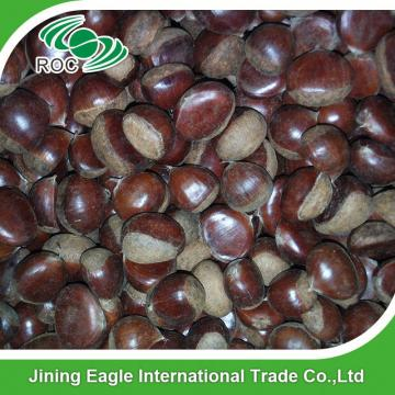 Wholesale organic yanshan fresh chestnut from china
