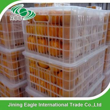 New harvest fresh honey sugar baby mandarin tangerine orange