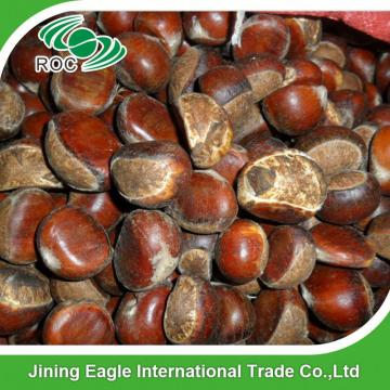 Hot selling top quality fresh chestnuts wholesale