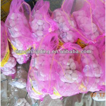 small packing garlic price 2017