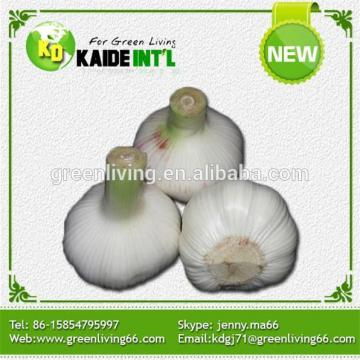 White Garlic Manufacturer In China