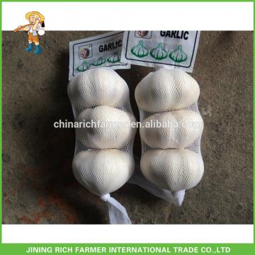 Chinese Rich Farmer Brand Garlic Is Slowly Down